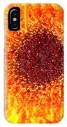 4190 IPhone Case