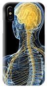 Human Nervous System, Artwork IPhone Case