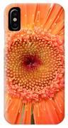 4955 IPhone Case