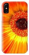 4965 IPhone Case