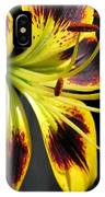 Asiatic Lily Named Black-eyed Cindy IPhone Case