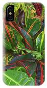 5- Croton IPhone Case