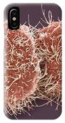Hela Cell Division, Sem IPhone Case