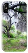 Santa Susana Mountains IPhone Case
