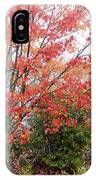 Fall Color Along The Highland Scenic Highway IPhone Case