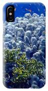Underwater Landscape IPhone Case
