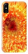 6190-007 IPhone Case