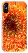 6190 IPhone Case