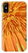 6224-1 IPhone Case