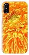 6226c IPhone Case