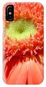 62471 IPhone Case