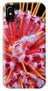 Common Pincushion Protea IPhone Case