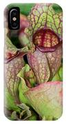 Balboa Park San Diego IPhone Case