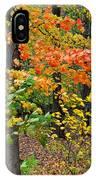 A Blustery Autumn Day IPhone Case
