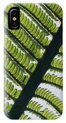 A Close View Of A Fern IPhone Case