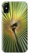 A Close View Of A Palm Frond IPhone Case