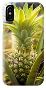 A Close View Of A Tainung Pineapple IPhone Case