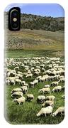 A Flock Of Sheep IPhone Case