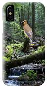 A Giant Cedar Waxwing On Mt Spokane IPhone Case