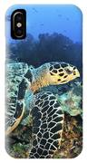 A Hawksbill Turtle Swims IPhone Case
