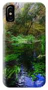 A Hint Of Fall At Ichnetucknee Springs IPhone Case
