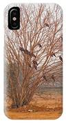 A Leafless Tree That Is Home To A Large Number Of Big Birds In The Middle Of A Ground IPhone Case