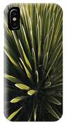 A Lechuguilla Plant In The Desert IPhone Case