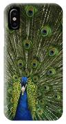 A Male Peacock Displays His Feathers IPhone Case