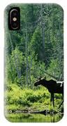 A Natural Salt Lick Lures Moose IPhone Case