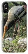 A Painted Stork Feeding Its Young At The Delhi Zoo IPhone Case