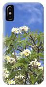 A Plumeria Caracasana Tree In Full IPhone Case