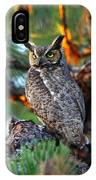 A Portrait Of A Wise Man IPhone Case