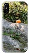 A Pumpkin In Central Park IPhone Case