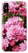 A Sea Of Pink Chrysanthemums IPhone Case