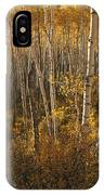 A Stand Of Aspen Trees Displaying IPhone Case