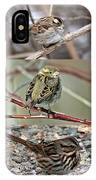 A Study In Sparrows IPhone Case