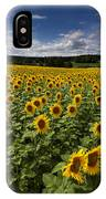 A Sunny Sunflower Day IPhone Case