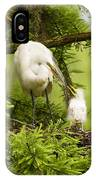 A Tender Moment - Great Egret And Chick IPhone Case