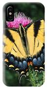A Tiger Swallowtail Butterfly Feeds IPhone Case