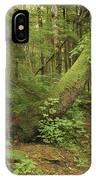 A Trail Cuts Through Ferns And Shrubs IPhone Case