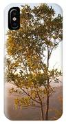 A Tree Outlined By The Rays Of The Setting Sun At Pachmarhi IPhone Case