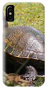 A Turtle Sunning IPhone Case