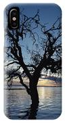 A View At Dawn Of A Silhouetted Tree IPhone Case