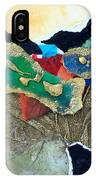 Abstract 2011 No.1 IPhone Case