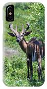 Acadia Buck IPhone Case