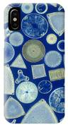 Algae, Fossil Diatoms, Lm IPhone Case