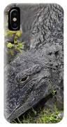Alligator Alley Friend  IPhone Case