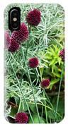 Allium Sphaerocephalum Flowers IPhone Case