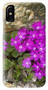 Alpine Primula (primula Hirsuta) IPhone Case