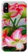 Amaryillis Flower Ring IPhone Case